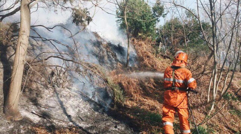Incendio boschivo Voltri